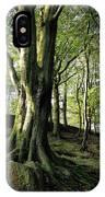 Crow Nest Woods IPhone Case