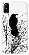 Crow Rook Perched In A Tree With Pare Branches In Winter IPhone Case
