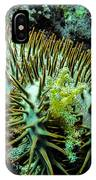 Crown Of Thorns In Pohnpei IPhone Case