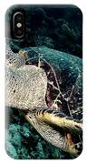Cruising Hawksbill IPhone Case