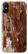 Crumbling Interior IPhone Case