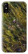 Crystal Clear Waters IPhone Case