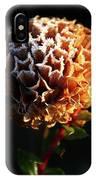 Crystal  Dawn  IPhone Case