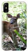 Cumberland Island Deer IPhone Case