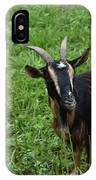 Curious Goat With Very Long Shaggy Fur IPhone Case
