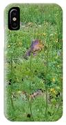 Cute Critter IPhone Case