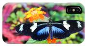 Cydno Longwing Butterfly IPhone Case