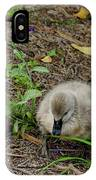 Cygnets IPhone Case