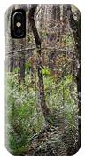Cypress Arch IPhone Case