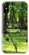 Cypress Knees In Wetlands IPhone Case