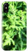Cypress Leaves Close Up IPhone X Case