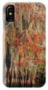 Cypress Winter Colors IPhone Case