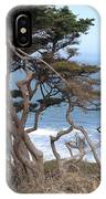 Cypress On The Cliff 15 IPhone Case