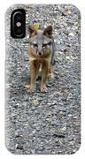 D-a0051-dc Gray Fox Pup IPhone Case