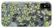 D07343-dc Lichen On Rock IPhone Case