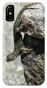 D7b6335 Western Fence Lizard, Male, Sonoma Mountain, Ca IPhone Case