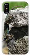 D7b6336 Blue Belly Lizard IPhone Case