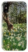 Daffodil Hill Gardens IPhone Case