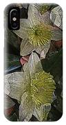 Daffodil Study IPhone Case
