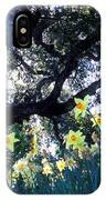 Daffodils And The Oak IPhone Case