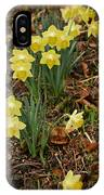 Daffodils With A Purple Flower IPhone X Case