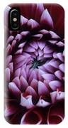 Dahlia Deep Maroon And While V1 IPhone Case