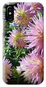 Dahlia Group IPhone Case