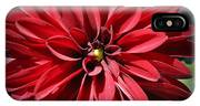 Dahlia Radiant In Red IPhone Case
