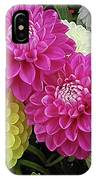 Dahlias Multi IPhone Case