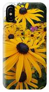 Daisies From Niagara IPhone Case