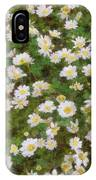 Daisies In Spring IPhone Case