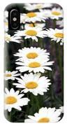 Daisies IPhone Case