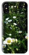 Daisy And Friends IPhone Case