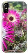 Daisy Flower In Jeju IPhone Case