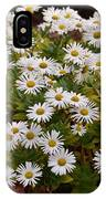 Daisy Wave IPhone Case