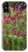 Dance Of The Tulips IPhone Case