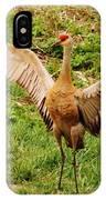Dancing Crane IPhone Case