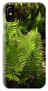 Dancing Ferns IPhone Case