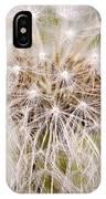 Dandelion Fireworks IPhone Case