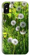 Dandelions On The Maryland Appalachian Trail IPhone Case
