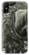 Dapple Grey IPhone Case