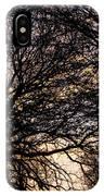 Dappled Sunset-1550 IPhone Case