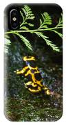 Dart Frogs On The Move IPhone Case