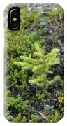 Ddp Djd Spruce Seedling 16 IPhone Case