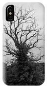 Dead Live Oak IPhone Case