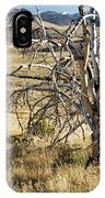 Dead Tree Panorama IPhone Case