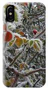 Decorated With Leaves IPhone Case