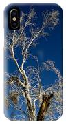 Deep Blue White Tree IPhone Case