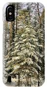 Deep In The Maine Woods IPhone Case