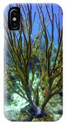 Deepwater Gorgonia IPhone Case